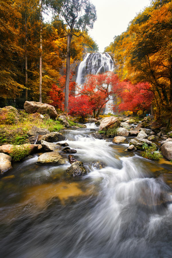 Waterfall in the autumn stock photos