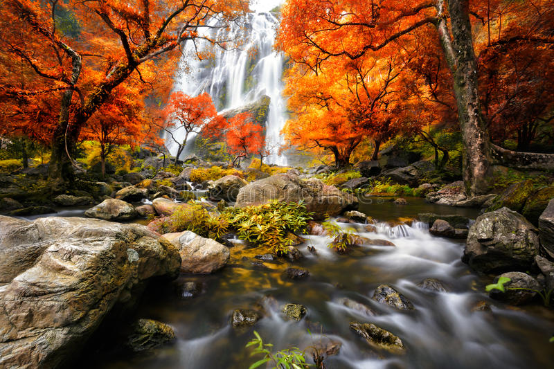 Waterfall in the autumn royalty free stock photos