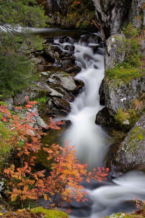 Waterfall in Autumn setting. stock photos
