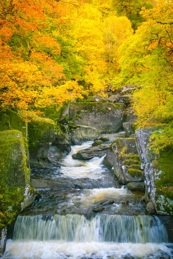 Waterfall in Autumn With Vibrant Leaves on Trees. Waterfall in Scotland in Autumn With Vibrant Foliage royalty free stock photo