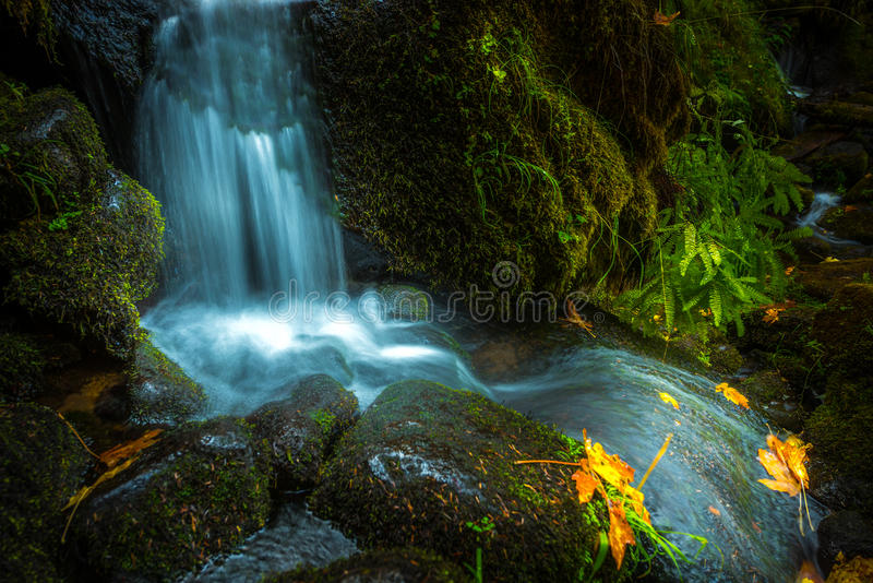 Waterfall Background Oregon Fall Colors stock photo