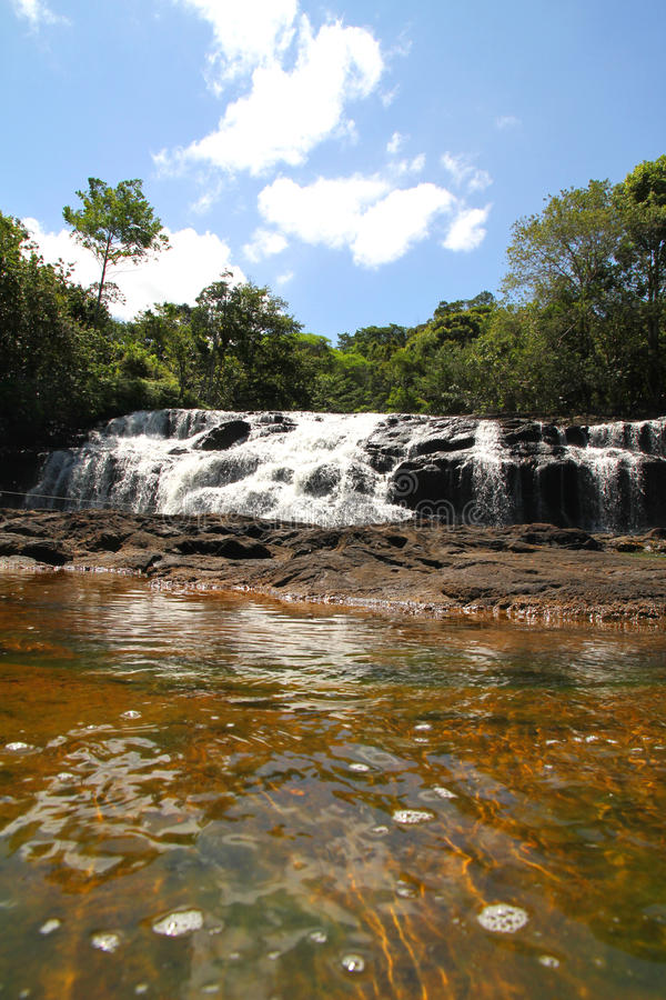 Download Waterfall in Bahia stock photo. Image of clear, green - 25951050