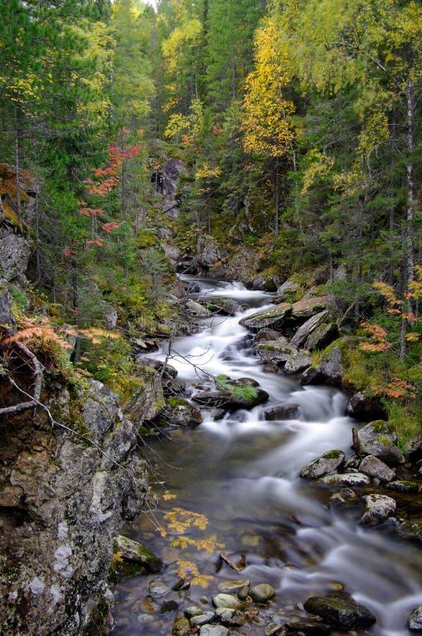 Waterfall in beautiful Autumn setting. royalty free stock photo