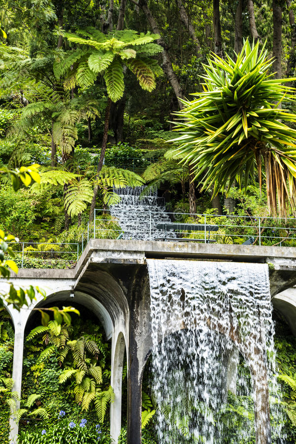 Download Waterfall In A Beautiful Garden At Monte Above Funchal Madeira  Editorial Image   Image Of
