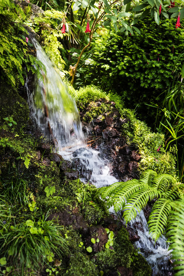Waterfall in a Beautiful Garden at Monte above Funchal Madeira. This wonderful garden is at the top of the cablecar from the seafront in Funchal. It is filled stock images