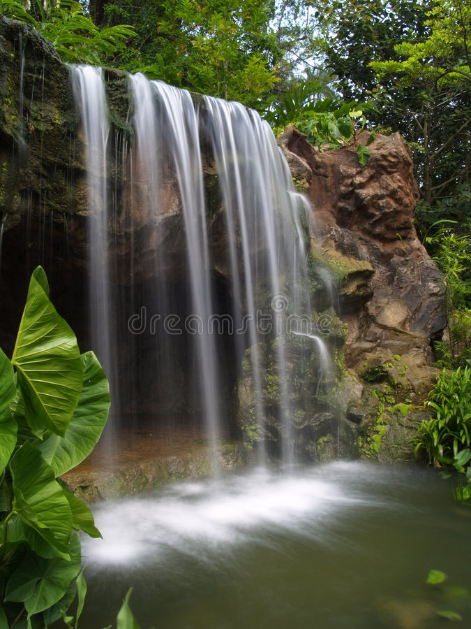 Waterfall at botanic garden royalty free stock photo