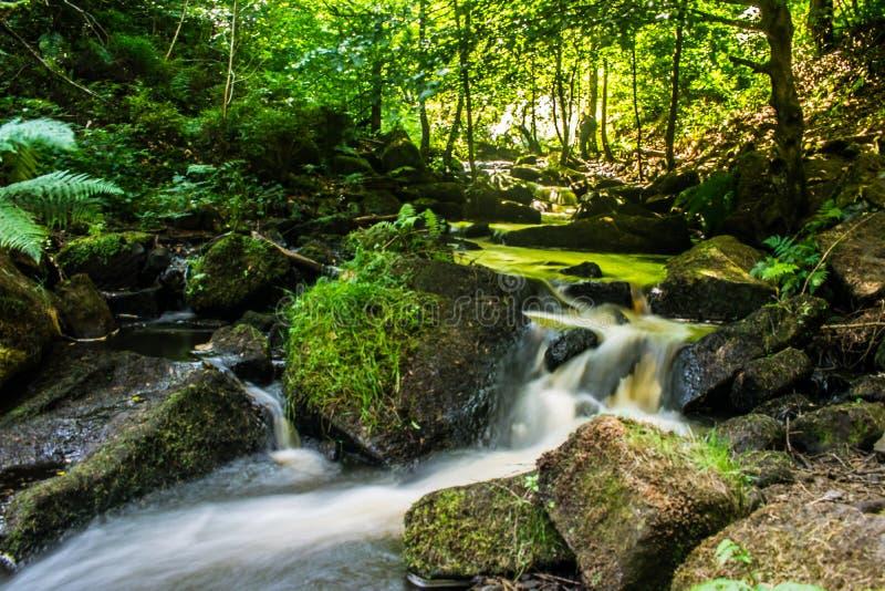 Waterfall brook Peak District royalty free stock photos