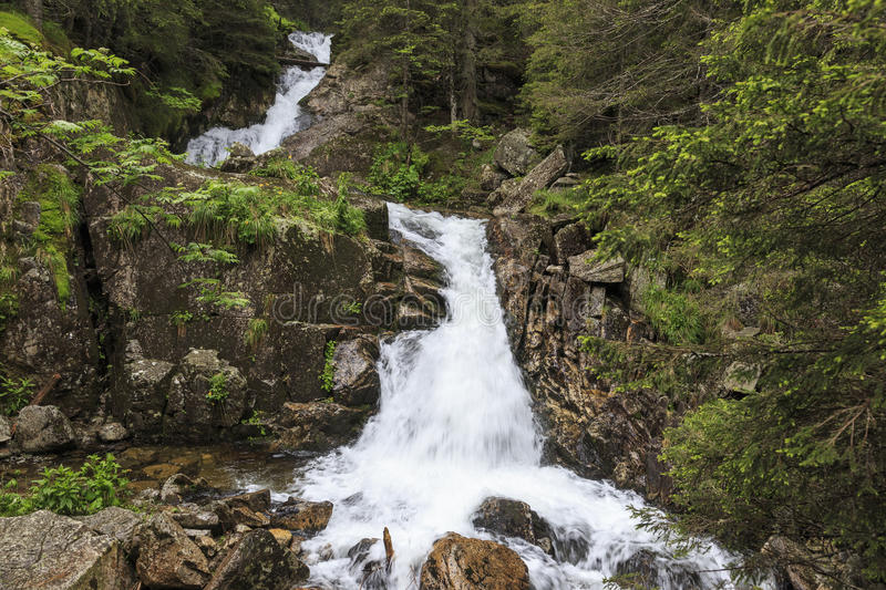 Waterfall in the Carpathians royalty free stock photos
