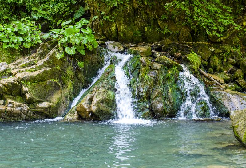 Waterfall in the Carpathians royalty free stock photo