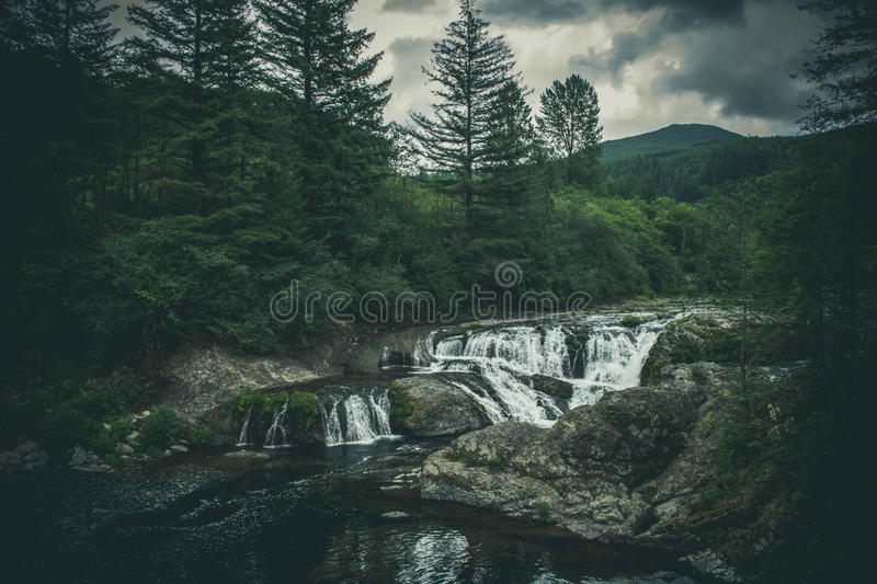 Waterfall Cascading Through A Forest stock photography