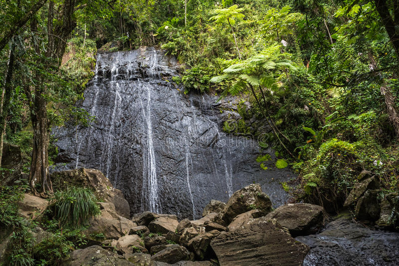 Waterfall cascading over a huge rock face in rainforest. With lush vegetation and larger bolders in the foreground stock photography