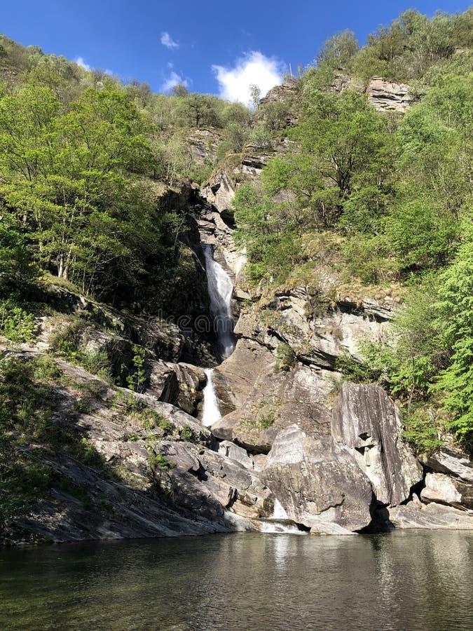 Waterfall Cascata Di Giumaglio of Wasserfall Cascata Di Giumaglio, Giumaglio de Maggia-Vallei of Valle Maggia of Maggiatal stock afbeeldingen