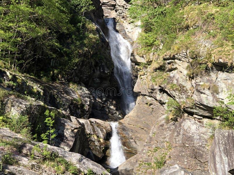 Waterfall Cascata Di Giumaglio of Wasserfall Cascata Di Giumaglio, Giumaglio de Maggia-Vallei of Valle Maggia of Maggiatal stock fotografie