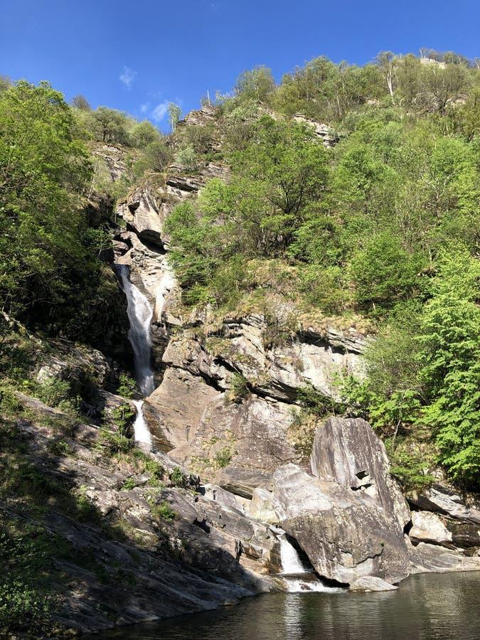 Waterfall Cascata Di Giumaglio of Wasserfall Cascata Di Giumaglio, Giumaglio de Maggia-Vallei of Valle Maggia of Maggiatal royalty-vrije stock afbeeldingen