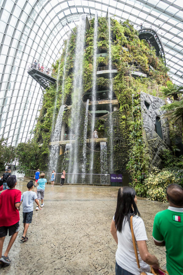 Download Waterfall In Cloud Forest, Singapore Editorial Stock Photo - Image: 36675313