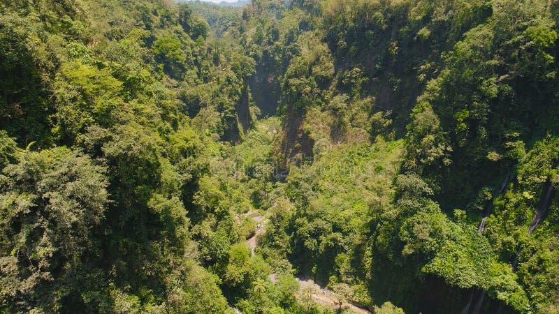 Waterfall Coban Sewu Java Indonesia. Beautiful waterfall Coban Sewu in tropical forest, Java Indonesia. aerial view tumpak sewu waterfall in rainforest royalty free stock photo
