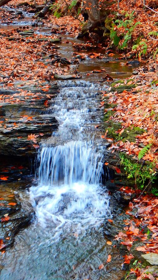 Waterfall in the creek royalty free stock images