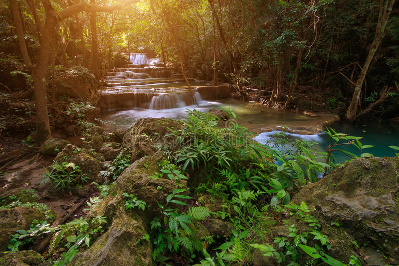 Waterfall in a deep forest stock image
