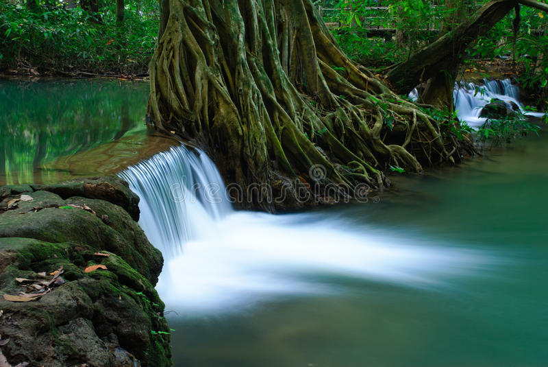 Waterfall in deep forest of Krabi,Thailand stock images