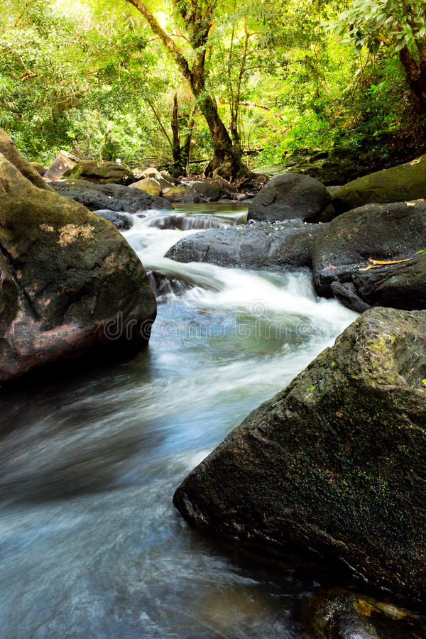 Waterfall with deep green forest background.  royalty free stock photography