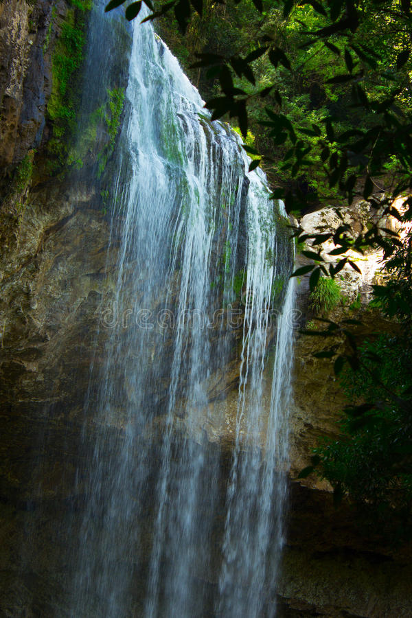 Download Waterfall stock photo. Image of grand, forest, canyon - 31374814