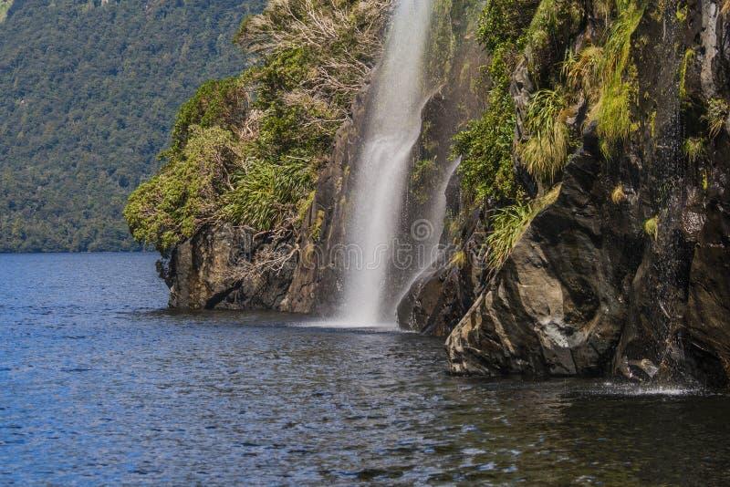Waterfall Doubtful Sounds stock image