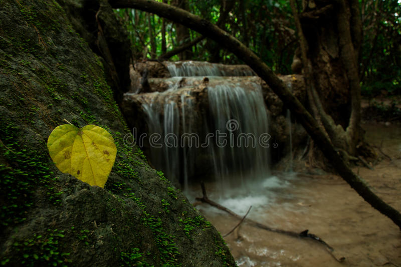 Download Waterfall stock image. Image of national, waterfall, park - 43526189