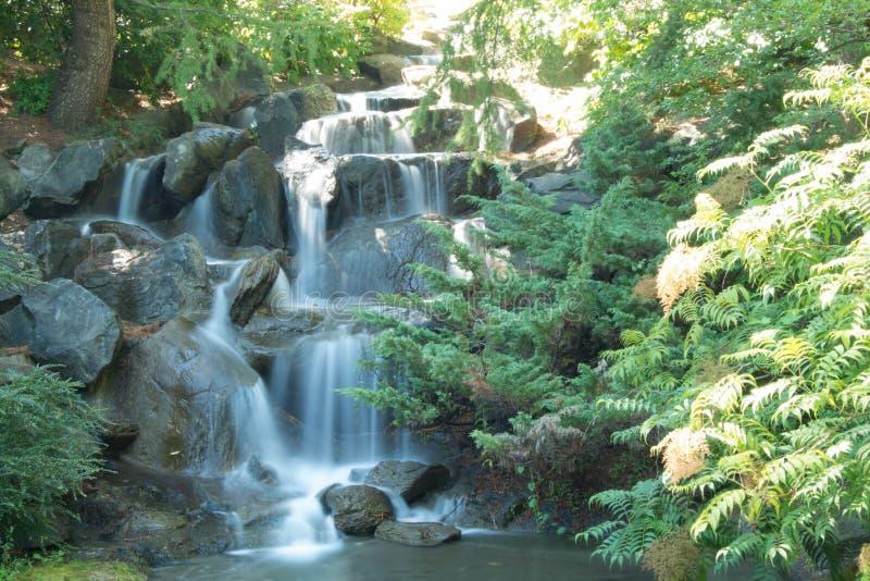 Waterfall - exhibit royalty free stock photos
