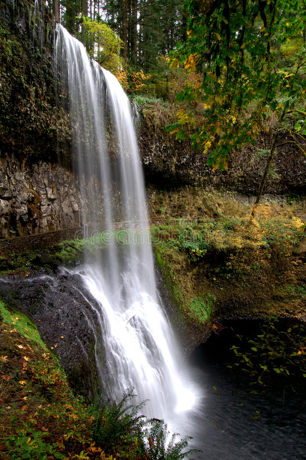 Waterfall with fall leaves royalty free stock photo