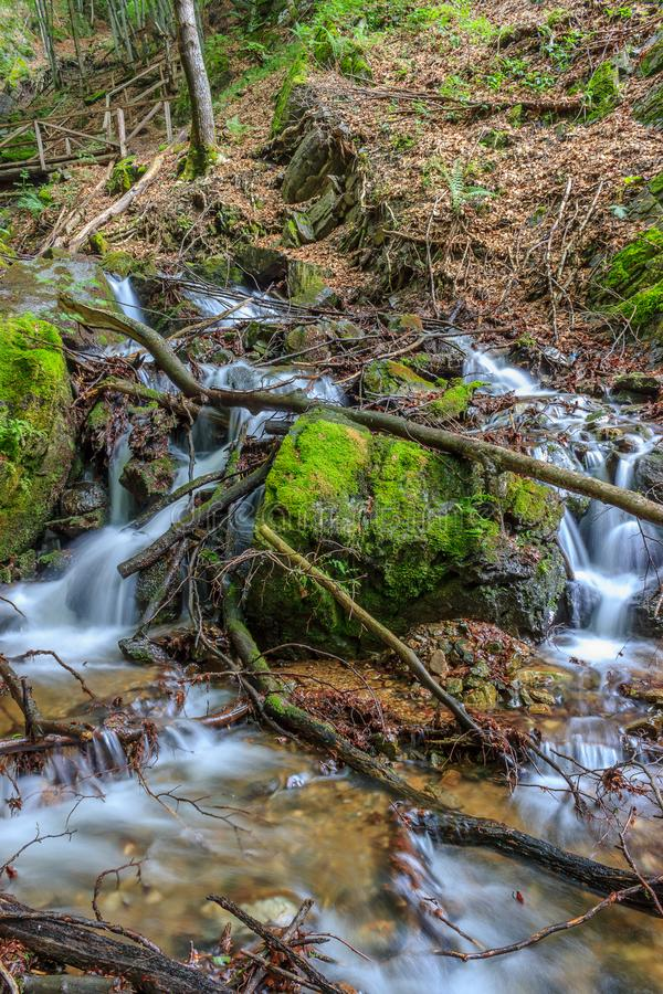Waterfall flowing between branches and rocks stock photo