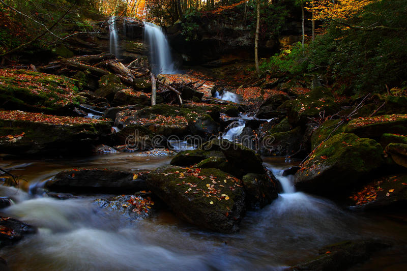 Download Waterfall In Forest Royalty Free Stock Photos - Image: 15894398