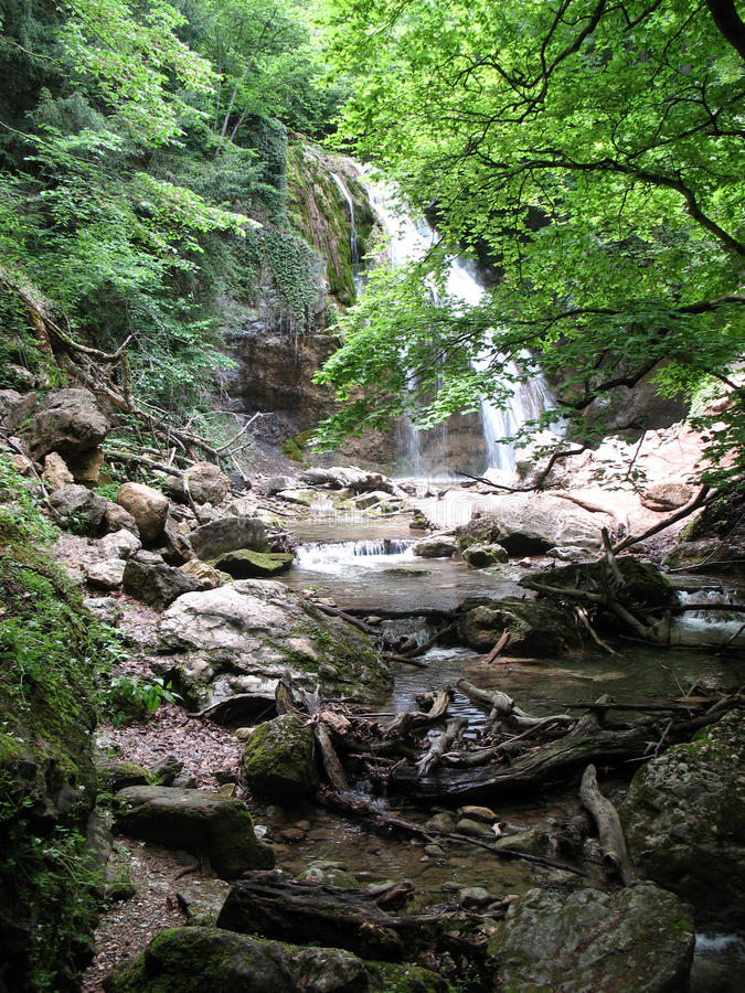 Download Waterfall In Forest Stock Photography - Image: 17338422