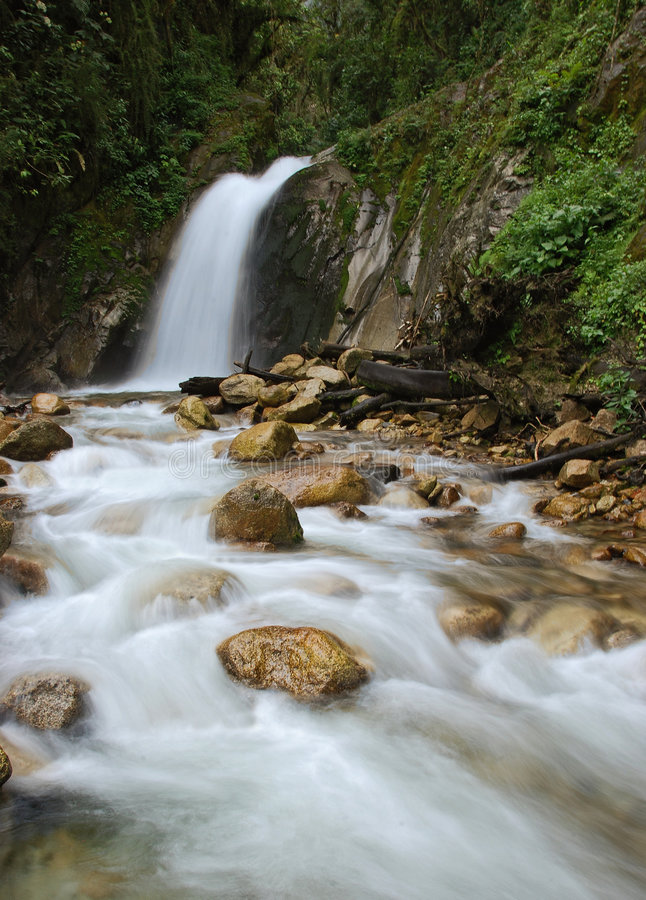 Download Waterfall In The Forest Stock Photos - Image: 7882893