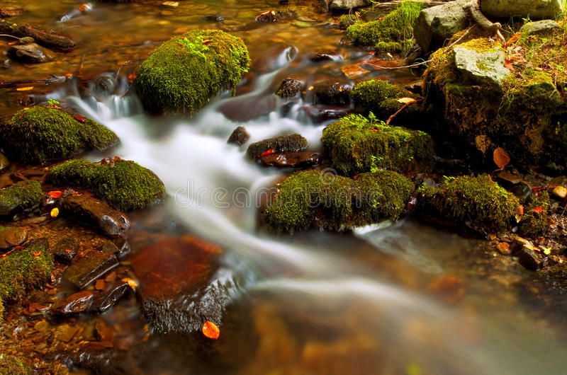 Download Waterfall In The Forest Autumn Stock Photo - Image: 11441420
