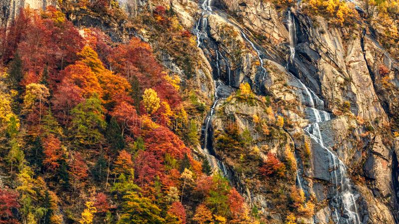 Waterfall and forest in autumn season royalty free stock photos