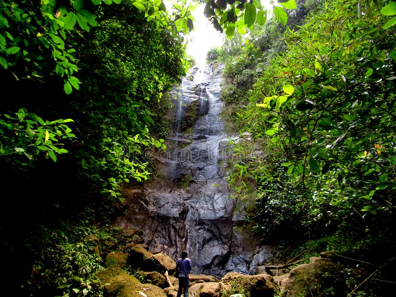Waterfall in the forest Ciamis West Java. The water splashed on the stone wall behind the leaves, the location is located in the hegarmanah village of ciamis royalty free stock photography