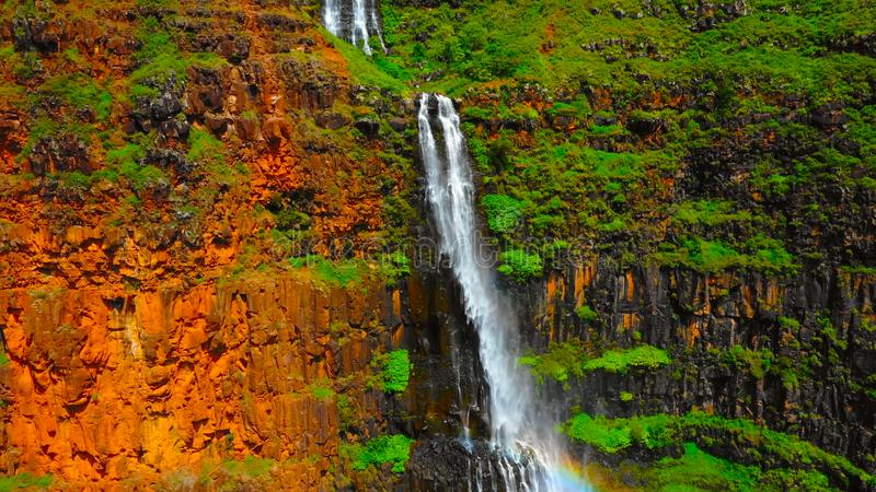 Waterfall in the forest in hawaii || A towering Akaka Falls in Hilo, Hawaii cascades 400 feet to a natural pool.  royalty free stock photo