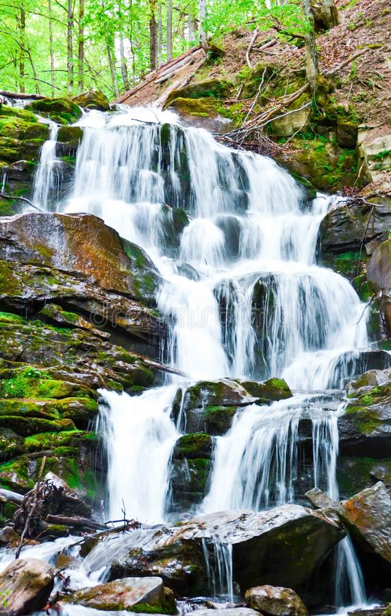 Waterfall in the forest royalty free stock images