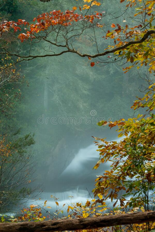 Waterfall framed by autumn foliage. Misty waterfall framed by autumn foliage. Frame design allows for text to create posters, flyers, stationary, etc royalty free stock image