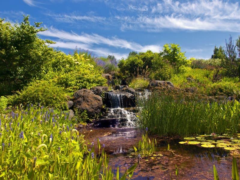 Waterfall in the garden stock photo
