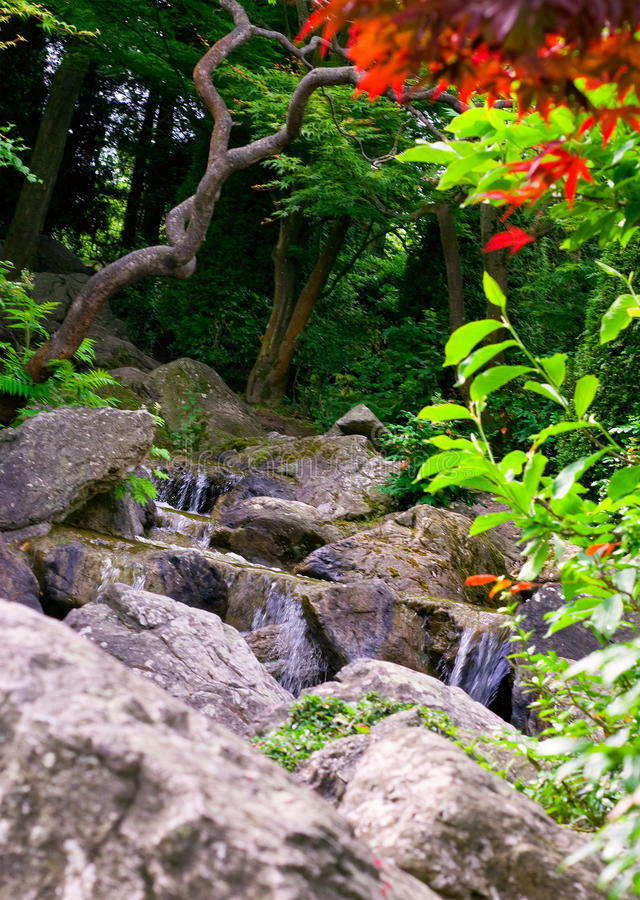 Download Waterfall in garden stock photo. Image of creek, relax - 23308610