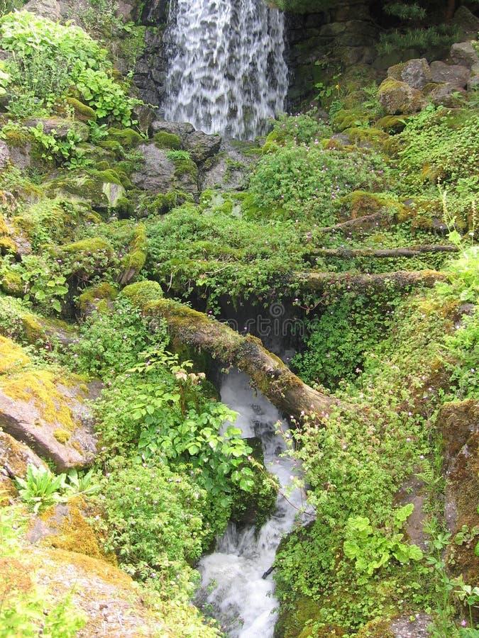Waterfall in the gardens stock photo