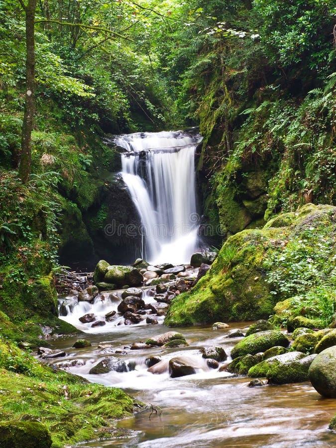 Waterfall, Germany Royalty Free Stock Image