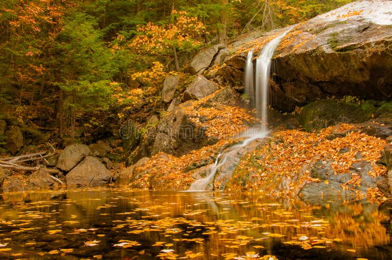 Waterfall on golden pond stock photo