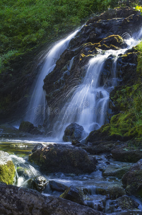 Waterfall on Grand Creek in Olympic National Park, Washington state. Water fall fed by Moose Lake along Grand Creek in Olympic National Park in the Pacific stock photos