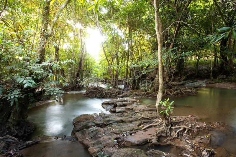 Waterfall green forest river stream landscape ,Waterfall hidden in the tropical jungle at National Park,Thailand. Waterfall green forest river stream landscape stock photo
