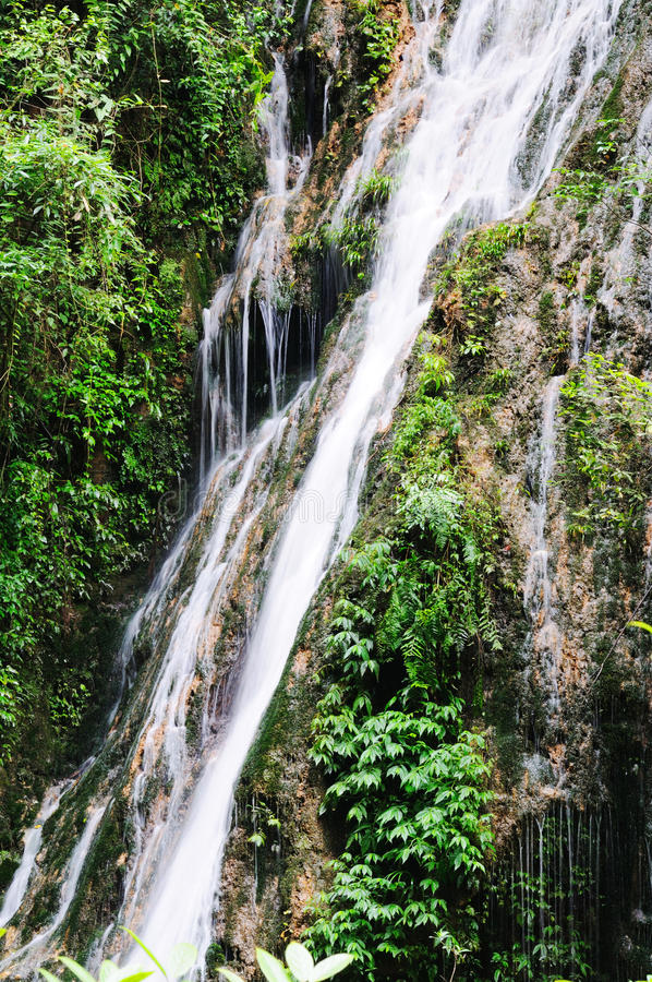 Download Waterfall and green leaves stock image. Image of clean - 15287213