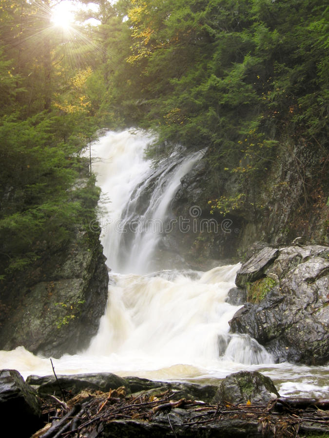 Free Waterfall In The Woods Royalty Free Stock Photo - 14594445