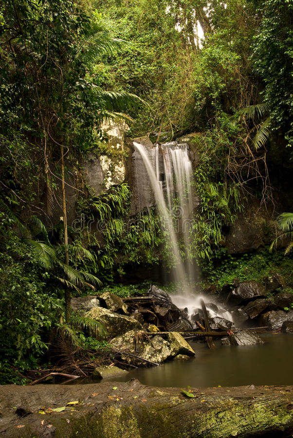 Free Waterfall Into The Pond Royalty Free Stock Image - 14500326