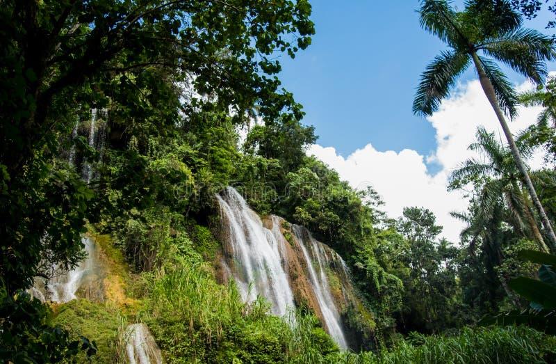 Waterfall in jungle stock image